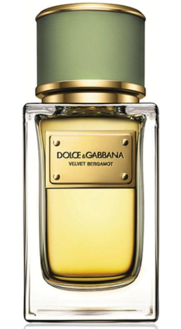 Dolce&Gabbana Velvet Bergamot — DOLCE&GABBANA