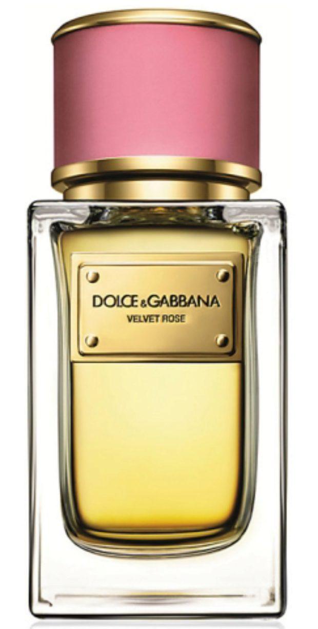 Dolce&Gabbana Velvet Rose — DOLCE&GABBANA